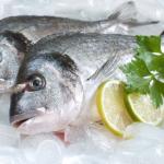 Gdzie dostaniecie świeże ryby?