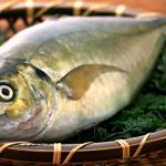 Jak poprawnie ocenić świeżość ryb?
