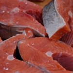 Zakup świeżego łososia