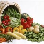 Zapiekanka z warzywami i łososiem w pomidorowym sosie – na parze!
