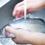 Patroszenie ryb – krótka instrukcja