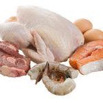 Zwierzęta, jedzenie i zabijanie…