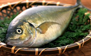 swiezosc-ryb