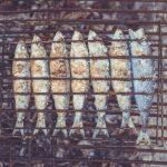 Ryba na parze – ile czasu trwa przygotowanie?